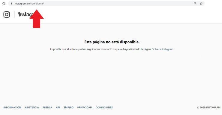 maluma cuenta no disponible