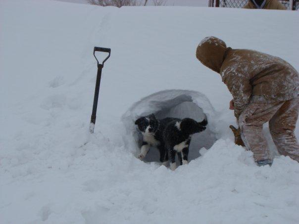 That snow life