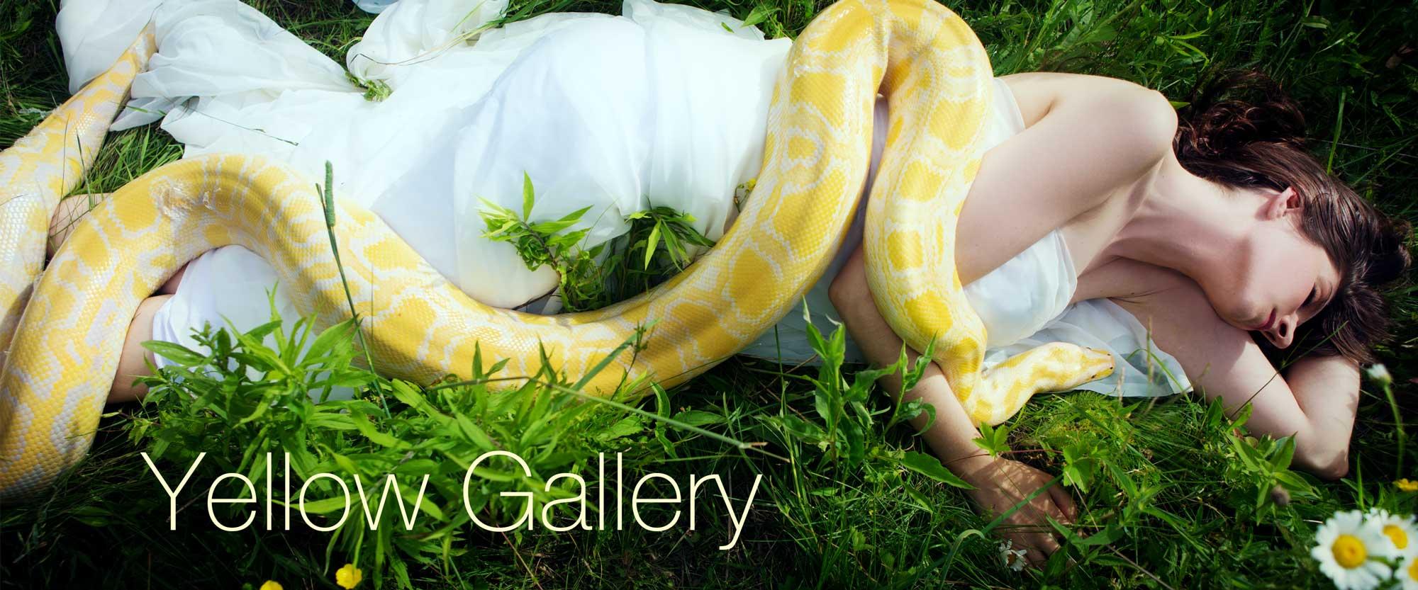 Laüra Hollick's Yellow Gallery