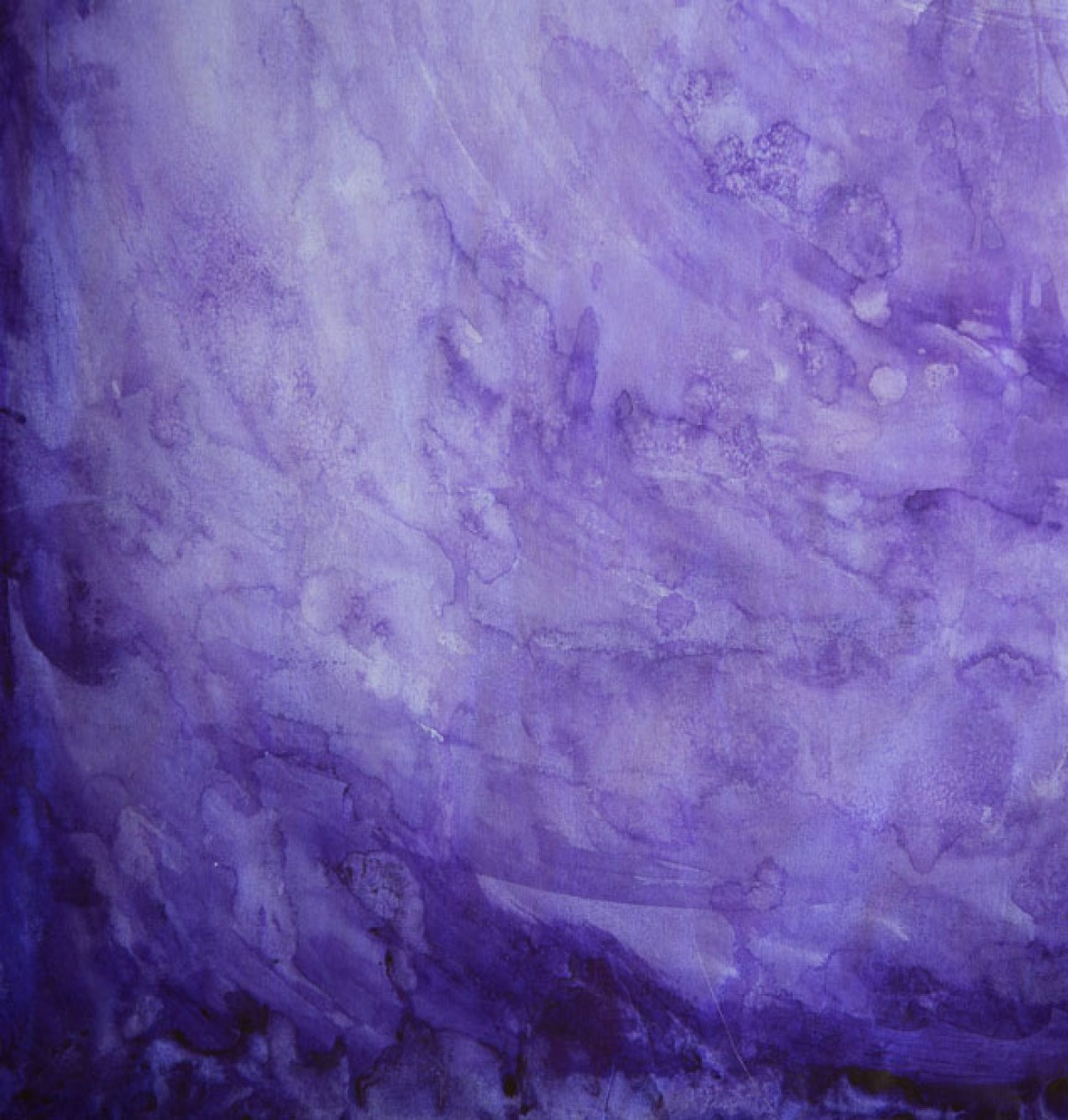 Purple Orchid Petal #2