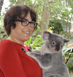 koalapic