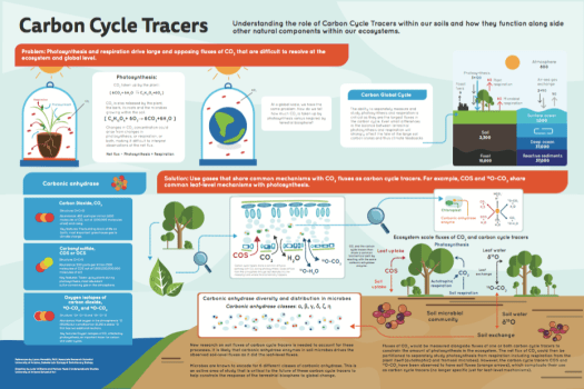 Carbon cycle tracer poster