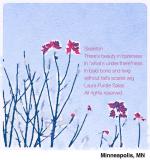 Skeleton - a poem by Laura Purdie Salas