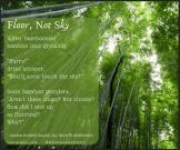 Floor, Not Sky