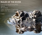 Ruler of the River