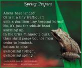 Spring Peepers