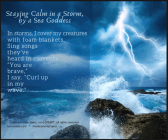 Staying Calm in a Storm