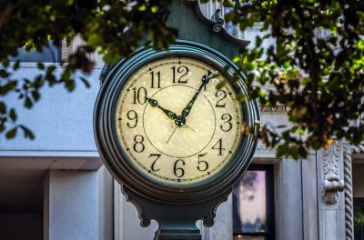 Clock surrounded by tree branches. Time is 10.05