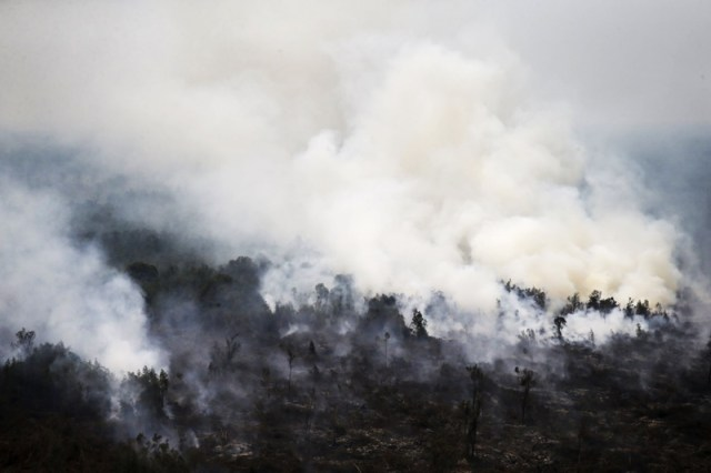 Southern Indonesia on fire. Pic courtesy of TodayOnline