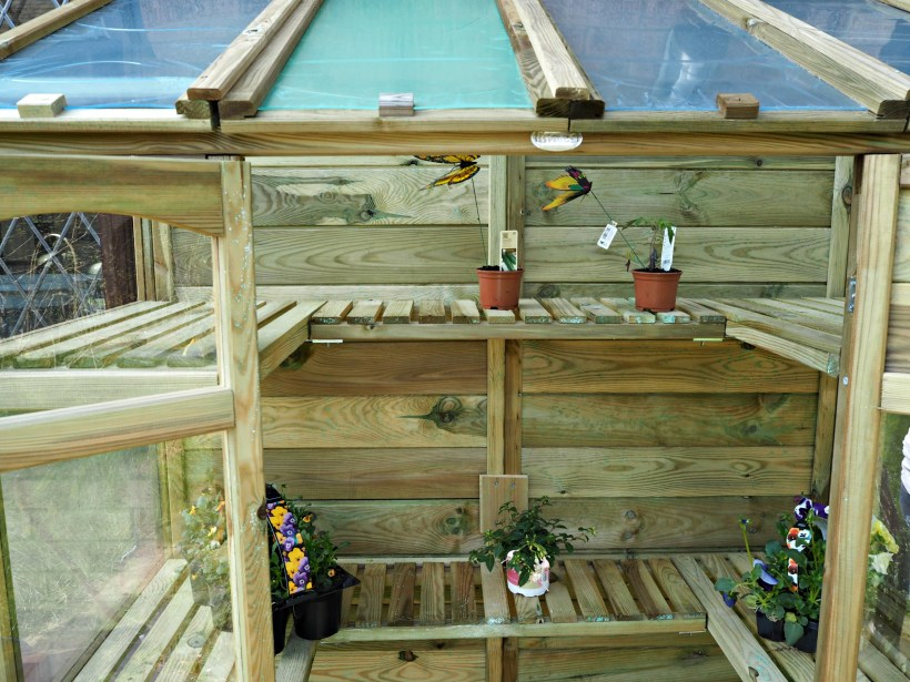 Victorian Tall Wall Greenhouse Review - shelving close up