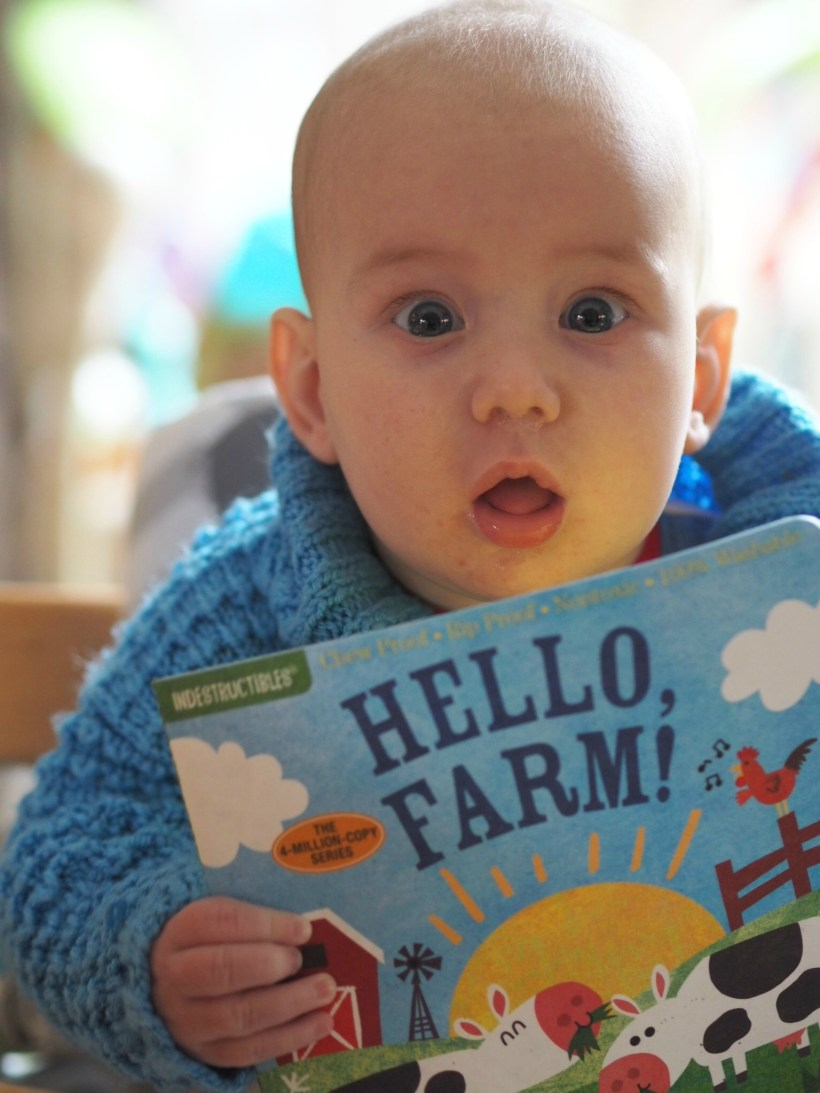 6 Books to Introduce a New Baby to Books