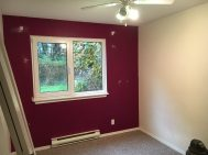 """""""Feature"""" wall in second bedroom/office."""