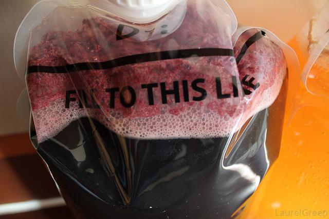 a closeup photo of some yeast foam on fermenting merlot