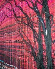 L-arbre-zoom