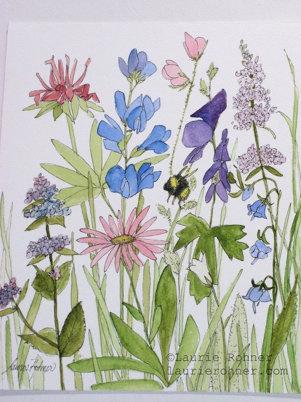 http://www.laurierohner.com/woodland-wildflowers-botanical-flower-watercolor-nature-art.html
