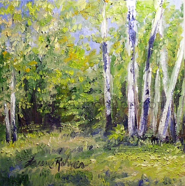 birch trees forest scenic landscape
