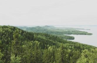 View from Ukko-Koli, National Landscape