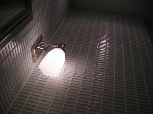 VANITY- FLOOR TO CEILING GLASS TILE