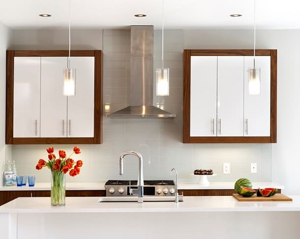kitchen cabinet door cabinets with glass doors design 101 types and styles ottawa inset contemporary