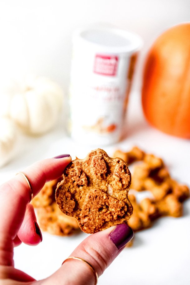 Pumpkin Spice Dog Treats [6 ingredients, one bowl]