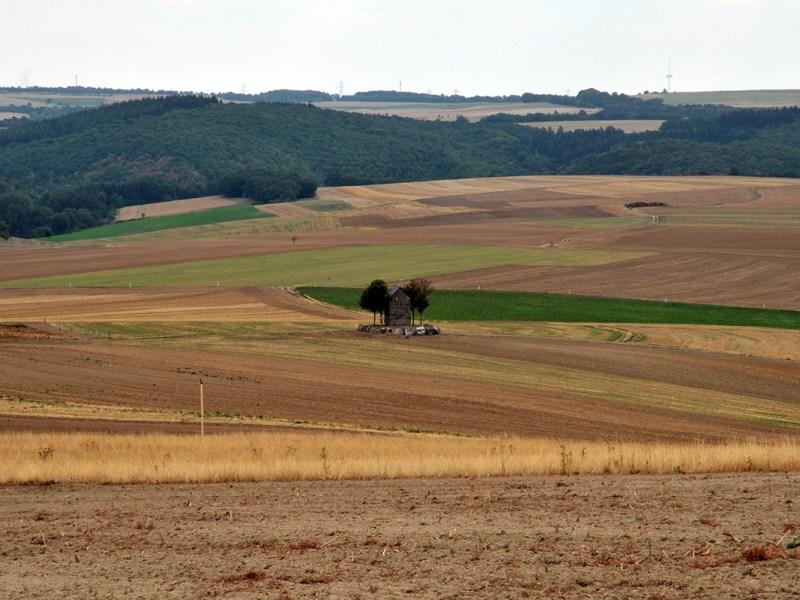Kleine Kapelle im Feld