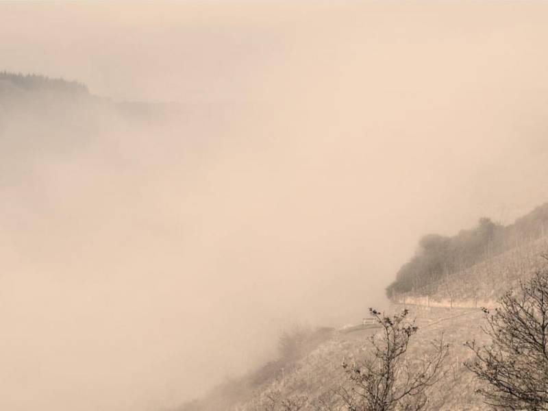 Blick über das Rheintal – Foto des Tages 2/ 2020