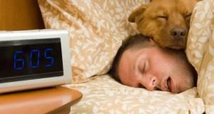 Être payé pour dormir, la NASA recherche des cobayes