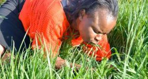 """Ce pasteur fait brouter de l'herbe à ses fidèles """"pour être plus proche de Dieu"""""""