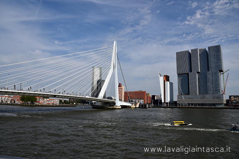 Rotterdam_copertina
