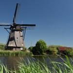 MULINI DI KINDERDIJK – Pedalando in bicicletta nella campagna olandese
