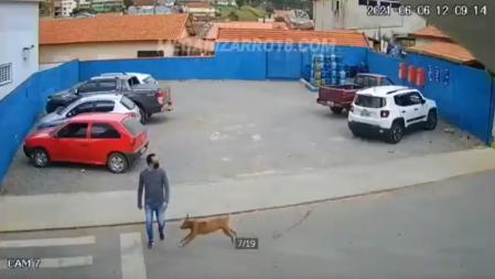 El perro arrolló al hombre.