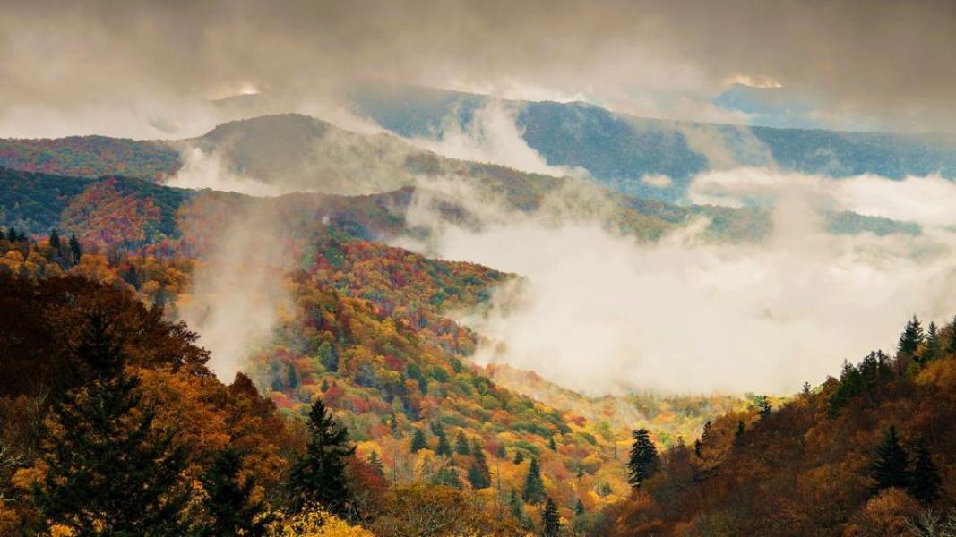 Resultado de imagen para Grandes Montañas Humeantes (USA)