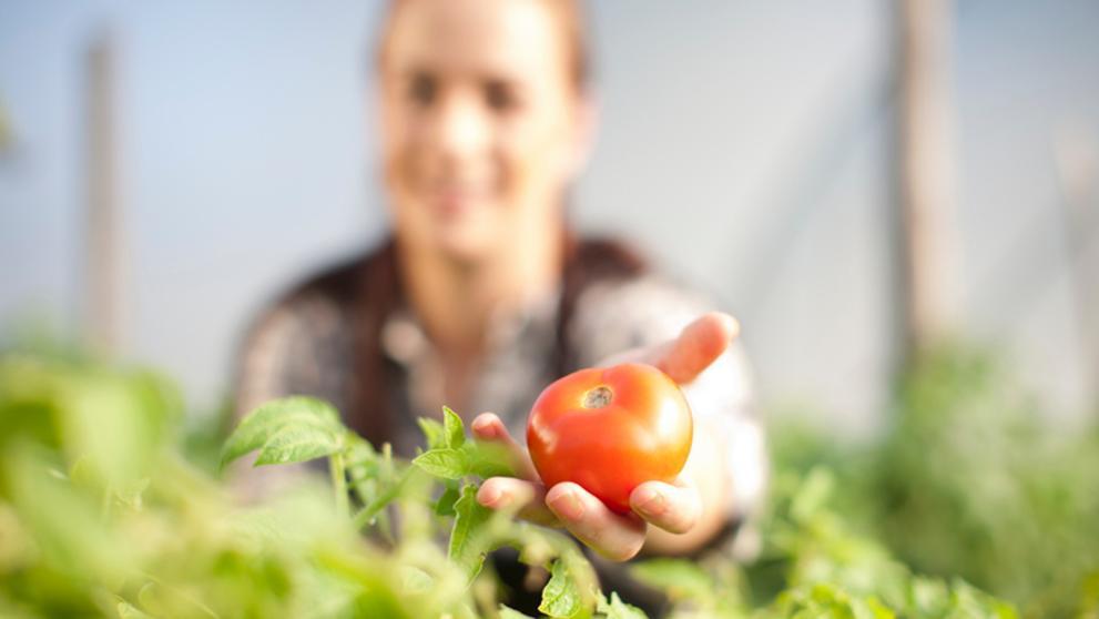 ¿Cómo afectará el cambio climático a la agricultura europea en 2030?