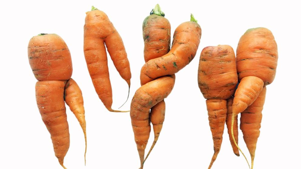 Image result for zanahorias deformes