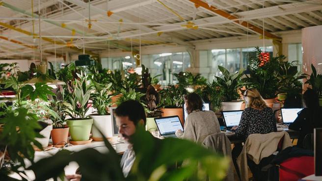 Oficinas de coworking Second Home en Lisboa