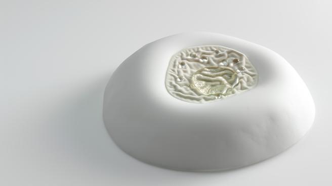 Cerebros de terciopelo 2015