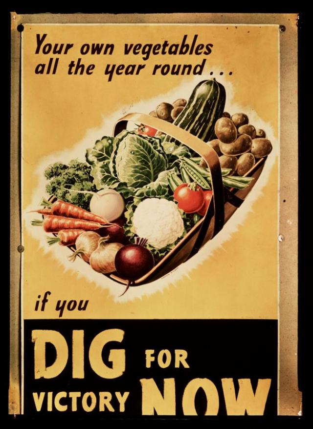 Un poster de la campaña en favor de que los británicos cultivaran sus propias verduras durante la guerra: 'Cava por la victoria'