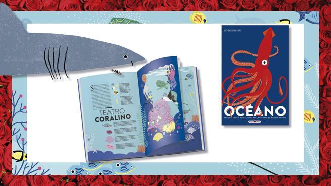 Details of the book, 'The ocean' by Hélène Druvert and Emmanuelle Grundmann (texts)