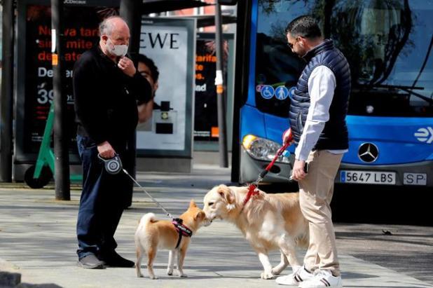 También hay multas por pasear al perro en estado de alarma