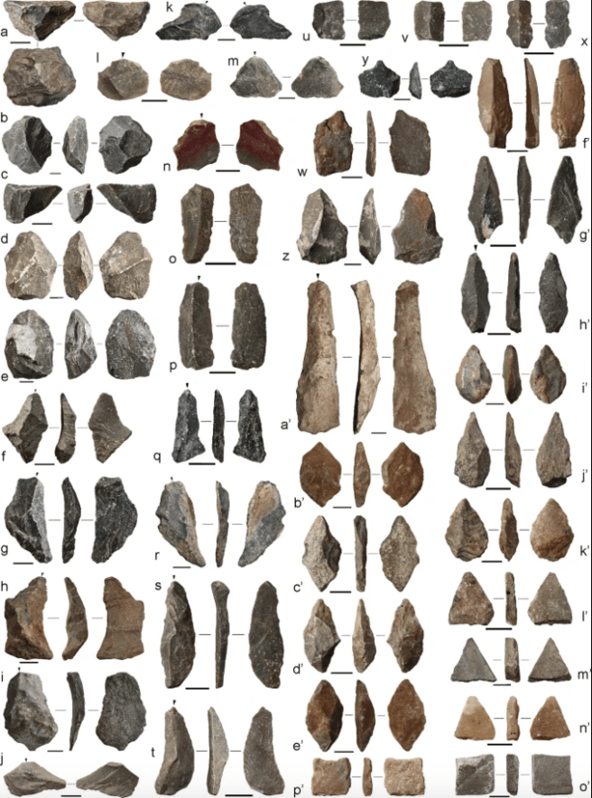Some examples of the tools found