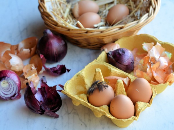 Pace Eggs - Natural Dye