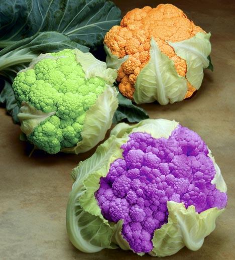 Coloured Cauliflowers