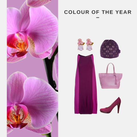 Colour of the Year 2014