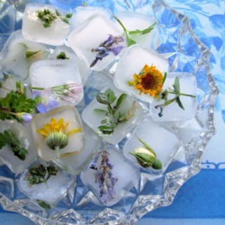 Freshness Frozen, Edible Flower Ice Cubes and Ice Sculptures!