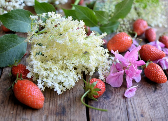 Elderflower, Rose and Strawberry Sorbet