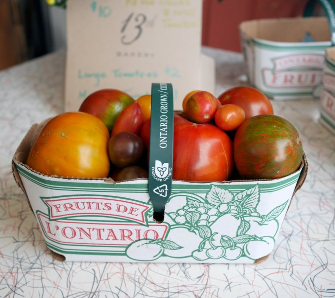 Ontario Heirloom Tomtatoes