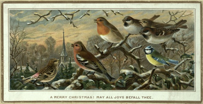 Image of a Christmas greeting card taken from the Gertrude Tomkinson scrapbook Christmas and New Year Greetings Cards c.1883-1890. Presented by Mrs. A. F. Dauglish in November, 1957. Early and Fine Printing Collection A741.68