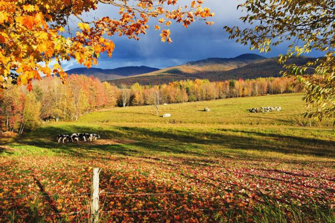 Sutton, Eastern Townships, Quebec