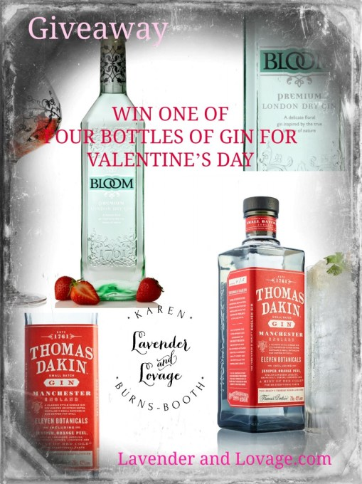 Giveaway Gin
