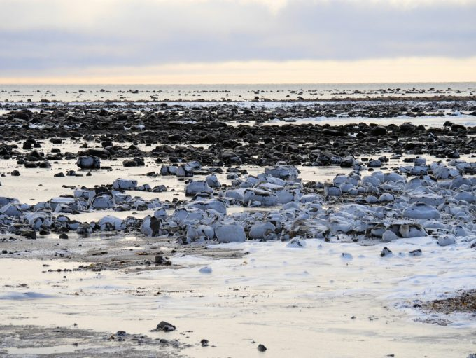 The Hudson Bay starts to freeze at Seal River